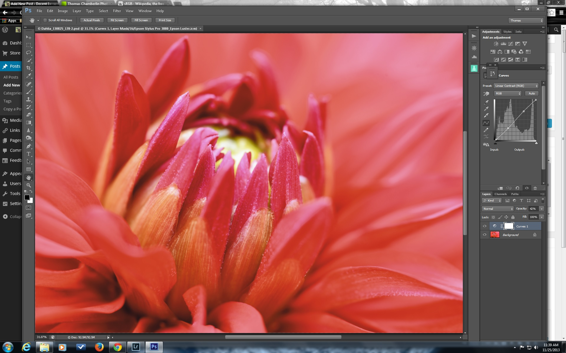 Photoshop decent exposure red dahlia soft proofed for luster paper with perceptual intent baditri Gallery